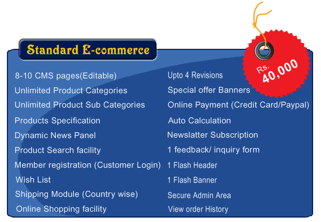 standard e commerce web design package